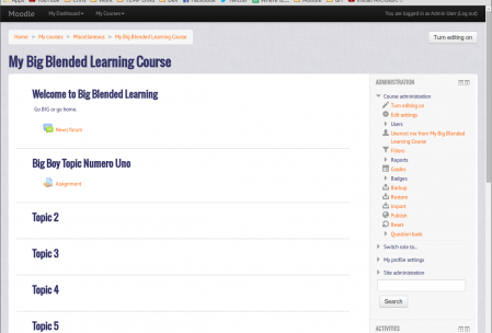 Course: My Big Blended Learning Course - Google Chrome_029